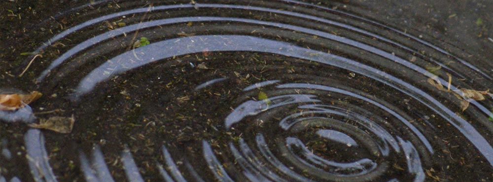 Ripples in Water, Photo by Jereen